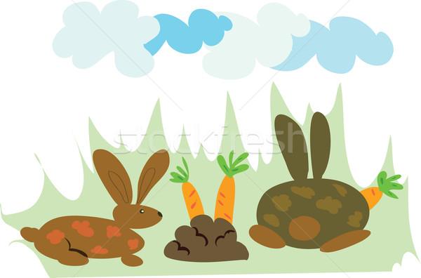 еды два морковь пейзаж искусства синий Сток-фото © kaycee