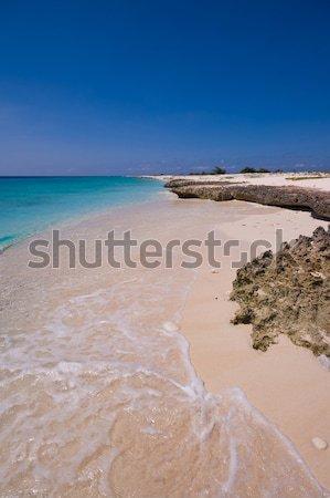 Сток-фото: тропический · пляж · бирюзовый · морем · небе · воды · пейзаж
