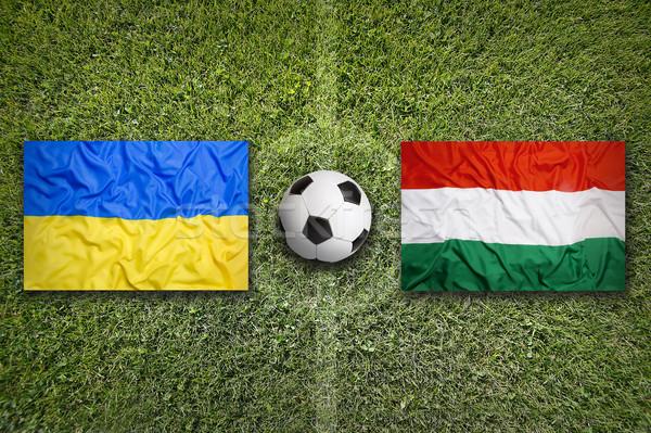Ukrajna vs Magyarország zászlók futballpálya zöld Stock fotó © kb-photodesign