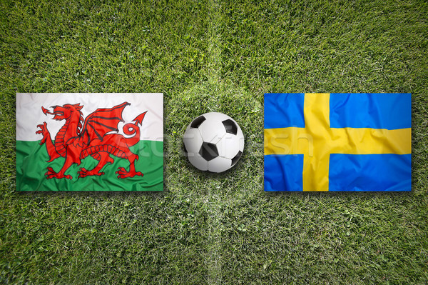 Wales vs. Sweden flags on soccer field Stock photo © kb-photodesign
