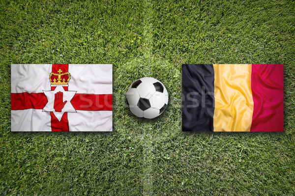 Northern Ireland vs. Belgium flags on soccer field Stock photo © kb-photodesign