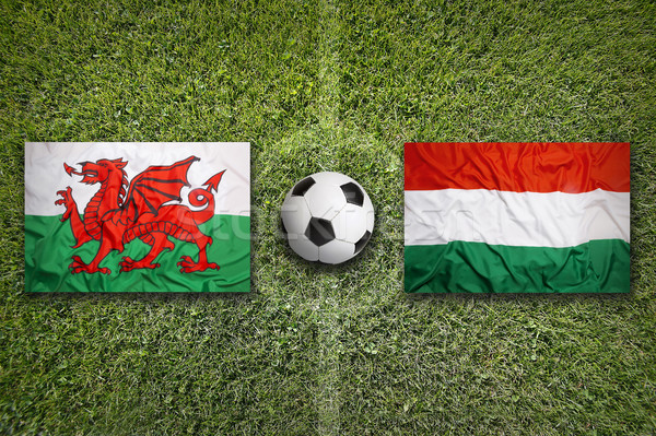 Wales vs. Hungary flags on soccer field Stock photo © kb-photodesign