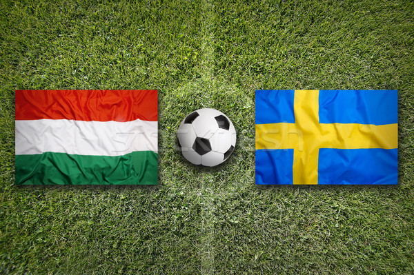 Hongarije vs Zweden vlaggen voetbalveld groene Stockfoto © kb-photodesign