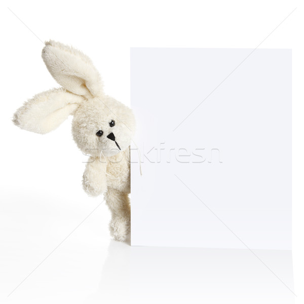 Rabbit ears look out from behind a white paper Stock photo © kb-photodesign