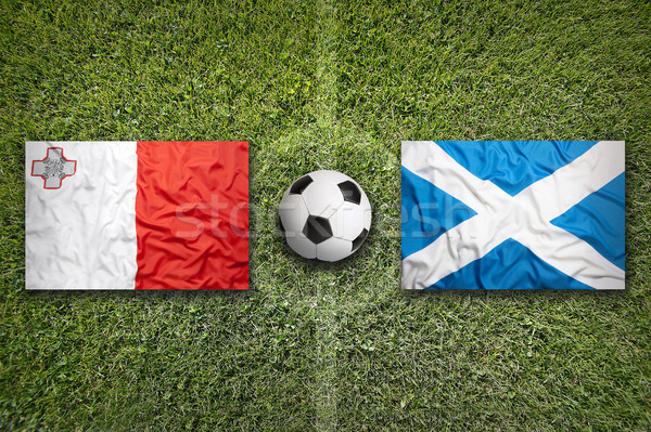 Malta vs. Scotland flags on soccer field Stock photo © kb-photodesign