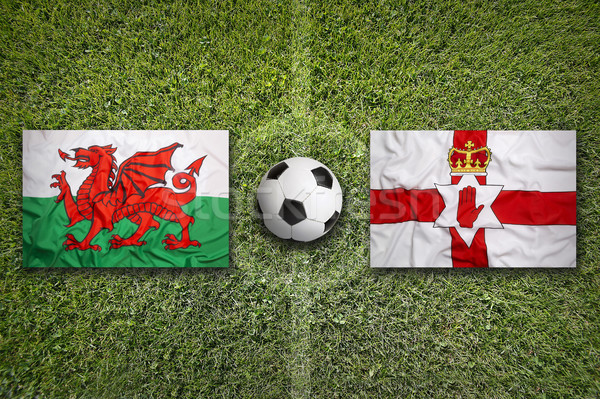 Wales vs. Northern Ireland flags on soccer field Stock photo © kb-photodesign