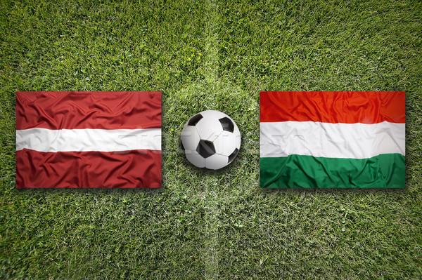 против флагами футбольное поле зеленый команда мяча Сток-фото © kb-photodesign