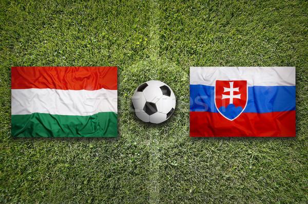 Hongrie vs Slovaquie drapeaux terrain de football vert Photo stock © kb-photodesign