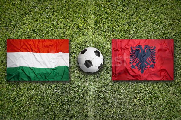 Венгрия против Албания флагами футбольное поле зеленый Сток-фото © kb-photodesign