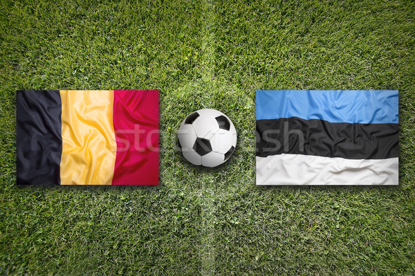 Belgium vs. Estonia flags on soccer field Stock photo © kb-photodesign