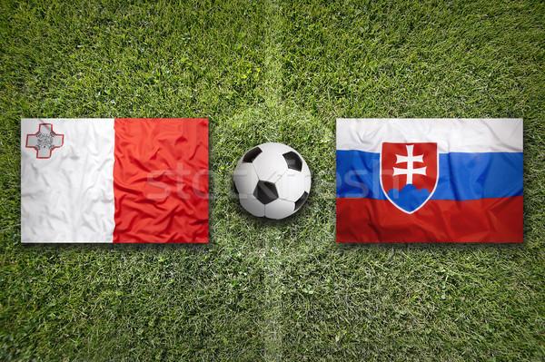Malta vs. Slovakia flags on soccer field Stock photo © kb-photodesign