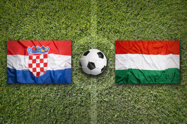 Croatia vs. Hungary flags on soccer field Stock photo © kb-photodesign