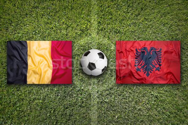 Belgium vs. Albania flags on soccer field Stock photo © kb-photodesign