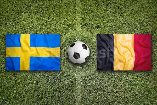 Svezia vs Belgio bandiere campo di calcio verde Foto d'archivio © kb-photodesign