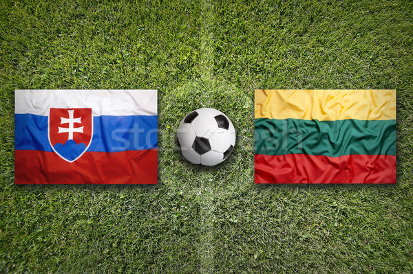 Slovakia vs. Lithuania flags on soccer field Stock photo © kb-photodesign