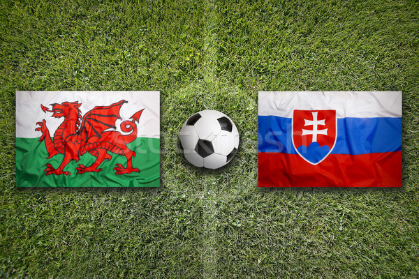 Wales vs. Slovakia on soccer field Stock photo © kb-photodesign