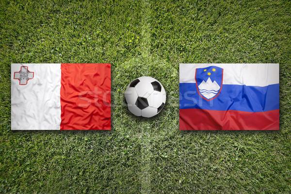 Мальта против Словения флагами футбольное поле зеленый Сток-фото © kb-photodesign