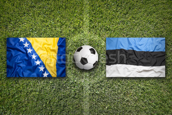 Bosnia and Herzegovina vs. Estonia flags on soccer field Stock photo © kb-photodesign