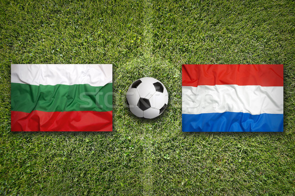 Bulgaria vs. Netherlands flags on soccer field Stock photo © kb-photodesign
