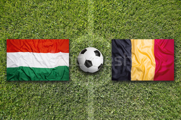 Macaristan vs Belçika bayraklar futbol sahası yeşil Stok fotoğraf © kb-photodesign