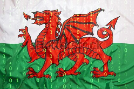 Bandera gales fútbol deportes natación Europa Foto stock © kb-photodesign