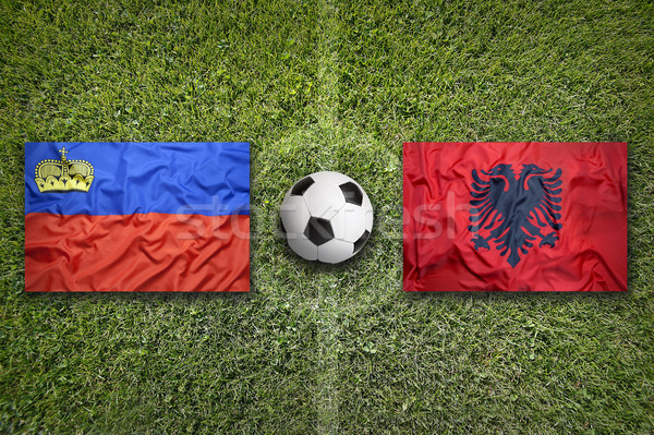 Liechtenstein and Albania flags on soccer field Stock photo © kb-photodesign