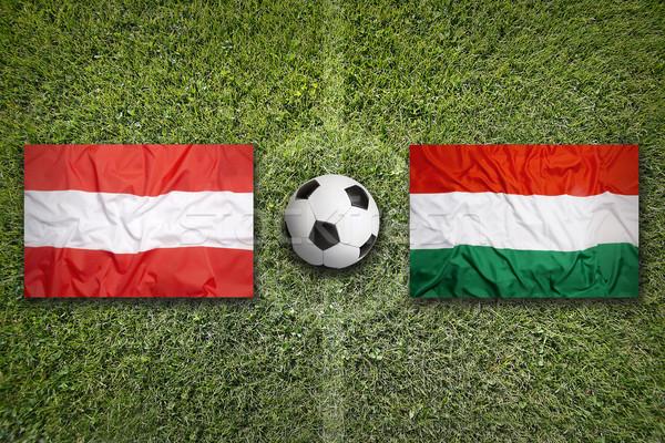 Австрия против Венгрия флагами футбольное поле зеленый Сток-фото © kb-photodesign