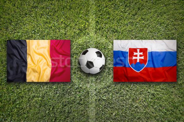 Bélgica vs Eslovaquia banderas campo de fútbol verde Foto stock © kb-photodesign
