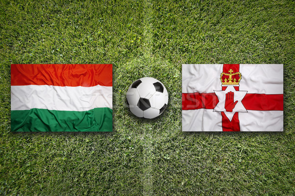Hungary vs. Northern Ireland flags on soccer field Stock photo © kb-photodesign