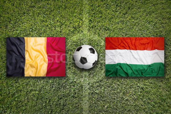 Belçika vs Macaristan bayraklar futbol sahası yeşil Stok fotoğraf © kb-photodesign