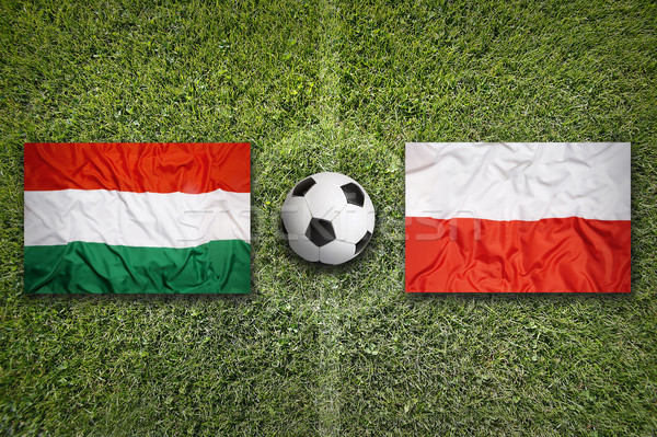 Hungary vs. Poland flags on soccer field Stock photo © kb-photodesign