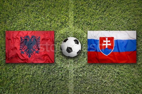 Albânia vs Eslováquia bandeiras campo de futebol verde Foto stock © kb-photodesign