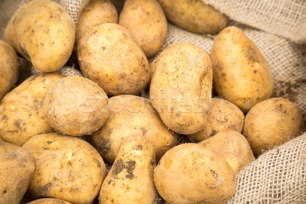 Ziemniaki worek brudne surowy konopie worek Zdjęcia stock © keeweeboy