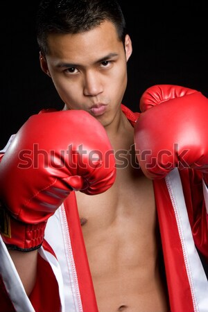 Boxer Throwing Punch Stock photo © keeweeboy
