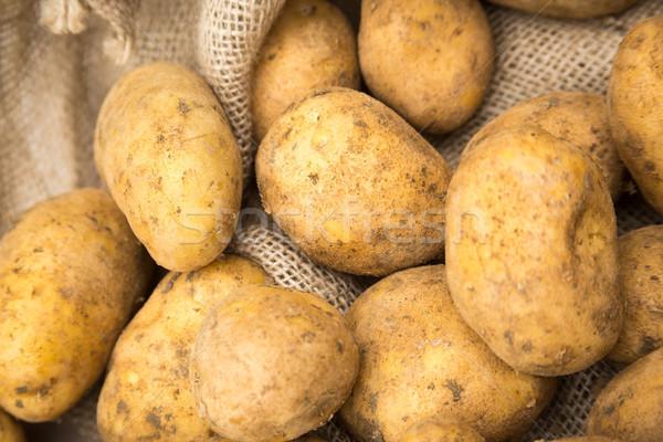Ziemniaki worek rustykalny konopie worek biały Zdjęcia stock © keeweeboy