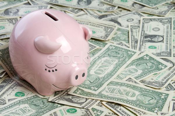 Para domuz pembe kumbara banka notlar Stok fotoğraf © keeweeboy
