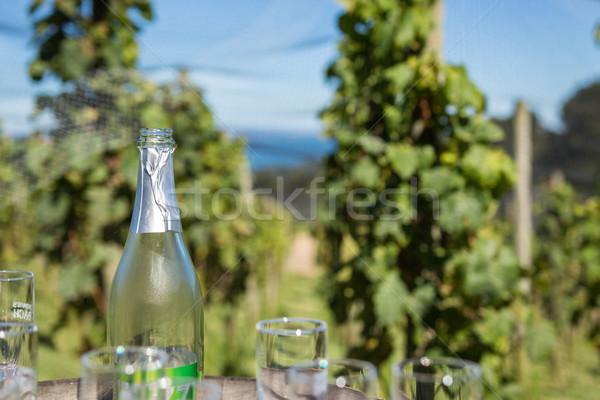 Garrafa de vinho vinha vazio azul garrafa álcool Foto stock © keeweeboy