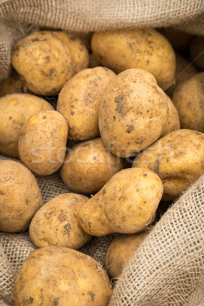 Batatas pano de saco saco rústico saco branco Foto stock © keeweeboy