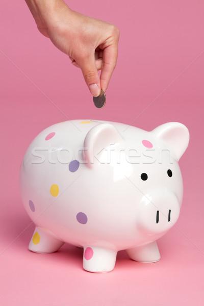 Piggy Bank Stock photo © keeweeboy