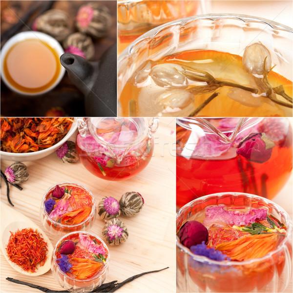 Coleção diferente chá medicinal infusão colagem branco Foto stock © keko64