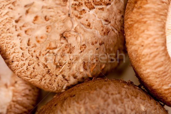 Stock photo: shiitake mushrooms