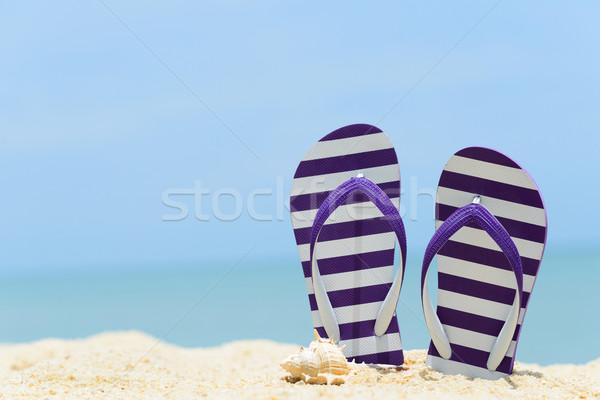 Verano playa par púrpura a rayas concha Foto stock © kenishirotie