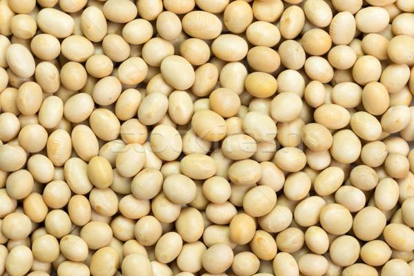 Soya beans Stock photo © kenishirotie