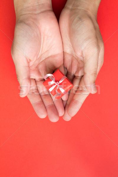 Geschenkbox Palmen rot Band Hand isoliert Stock foto © kenishirotie