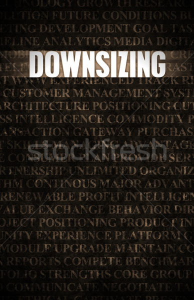 Downsizing Stock photo © kentoh
