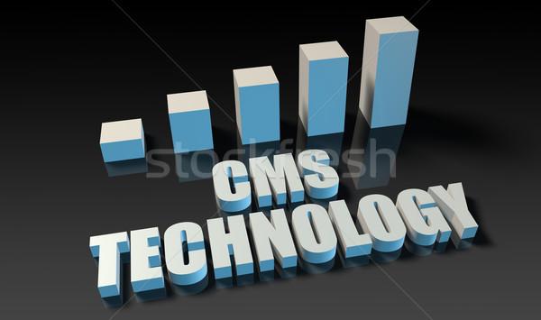 Cms technologii wykres wykres 3D niebieski Zdjęcia stock © kentoh