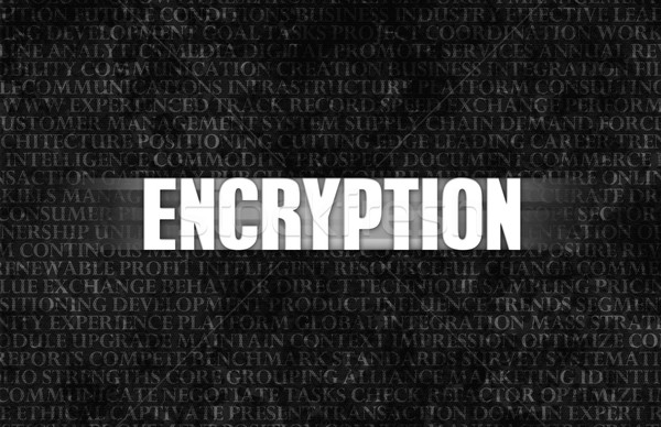 Encryption Stock photo © kentoh