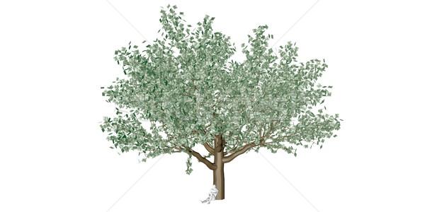 Beruházás megtakarított pénz roi pénzügyi bankügylet pénz Stock fotó © kentoh