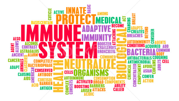 Immune System Stock photo © kentoh