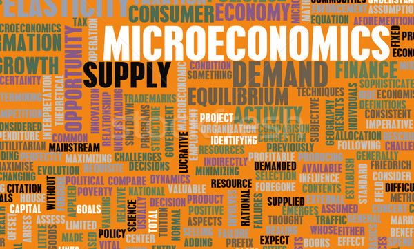 interaction nexus between real estate market and macroeconomics Modelling of cycles in the residential real estate market – interactions between the primary and the secondary market and multiplier effects.